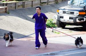 ペットホテル:お散歩(犬)